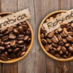 Arabica and Robusta comparison